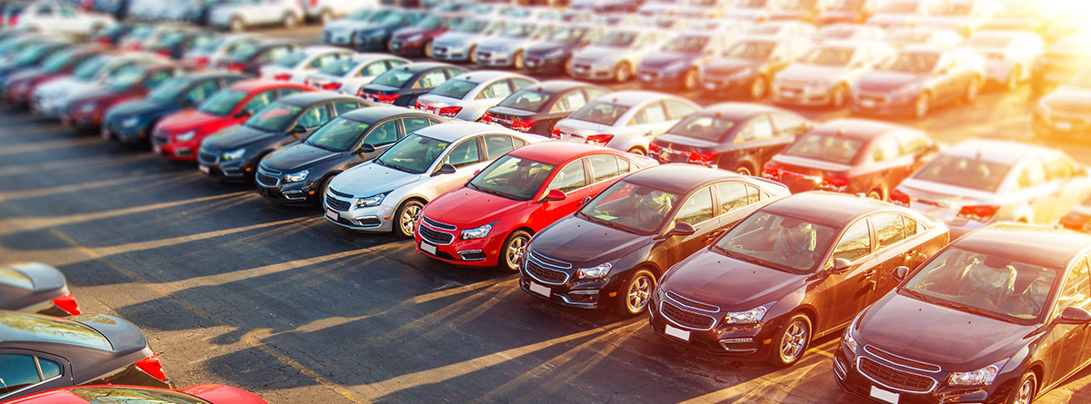 2Lineup of used cars