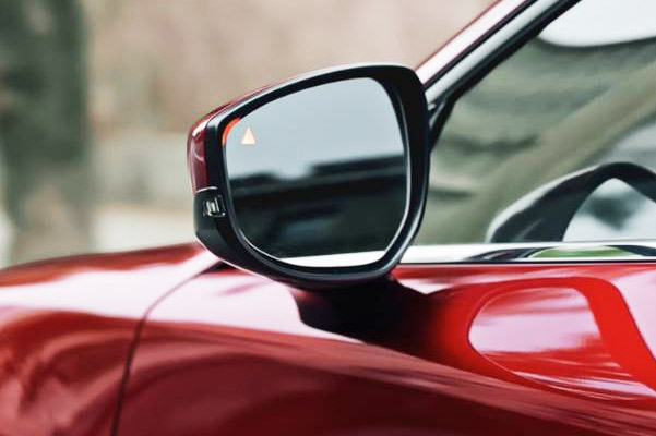 View of side mirror showing blind spot display